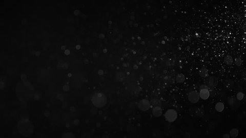 Natural Organic Dust Particles Floating On Black Background. Dynamic Dust Particles Randomly Float In Space With Slow Motion. Shimmering Glittering Particles With Bokeh. Real White Particles In Air.