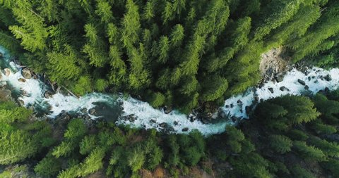 Drone Flyover Blue River Rapids Spring Flowing Above Old Growth Forest Trees