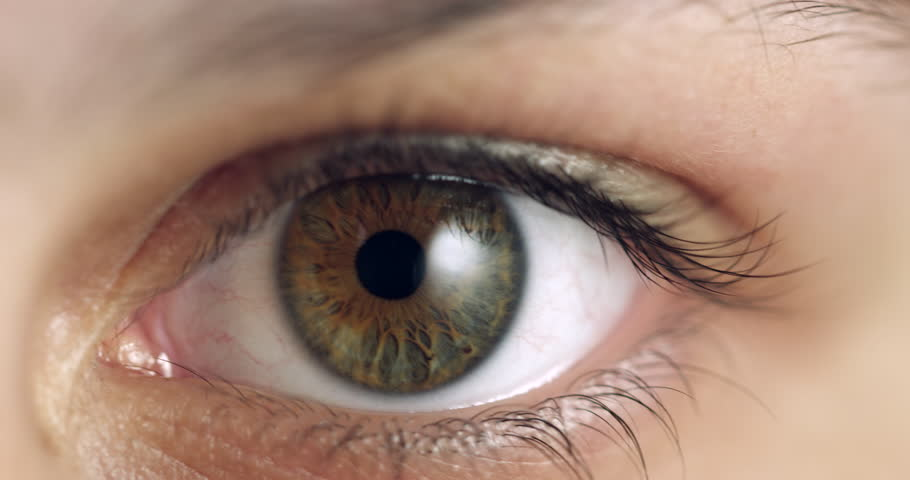 Extreme macro close up of Human Iris Eye. Female dilating pupil with green, yellow and brown colour pigmentation. Staring eye with long lashes on woman. Mixed race beautiful unique teen girl. | Shutterstock HD Video #1012045340