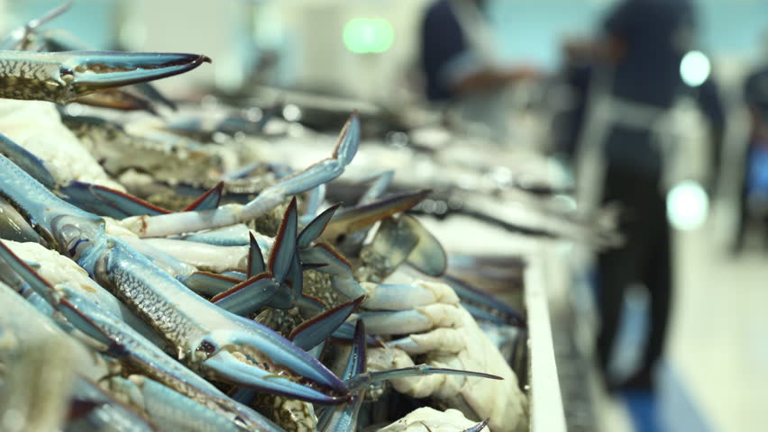 Fresh crabs and seafood in the fish market - Dubai | Shutterstock HD Video #1012548320