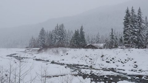 Snow-covered Nisqually River near Longmire at Mount Rainer, Washington. Falling snow at an isolated place.