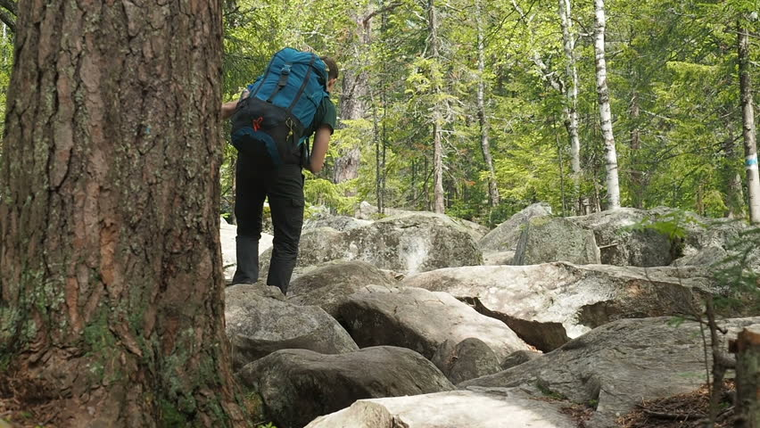 Hiker Man Hiking Walking Forest Cliffs. National Park in Russia Hiking Trail. Teen Travel Summer Vacation Hiking Trail. Tourist Man Travelling Sumer Hiking. Active Lifestyle Recreation Activity.    Shutterstock HD Video #1012719710