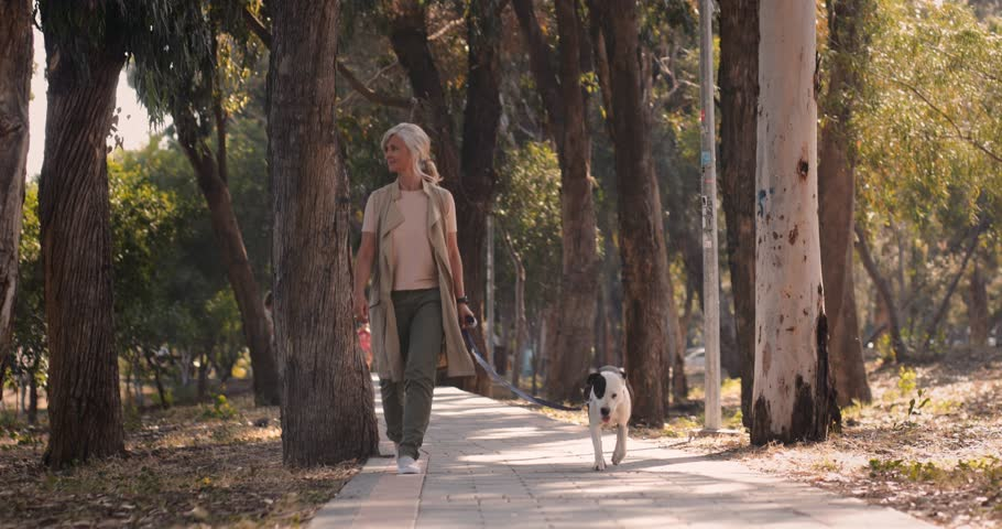 Active mature woman doing morning exercise by walking with dog in the woods