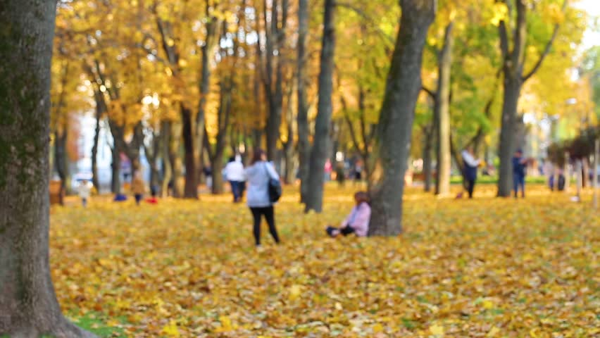 Many people of different age enjoy warm weather outdoors taking photos in colorful golden autumn park. Blurry real time full hd video footage.