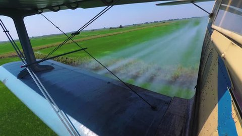 Agricultural Aviation. Crop Duster , Agriculture Aircraft Flies Low over a Field with Rice and Splashing, Sprays Chemicals Against Pests