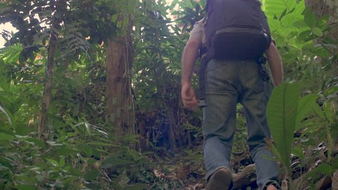Low angle of a man wearing a backpack walking up hill through a jungle on a dense hiking path during the day