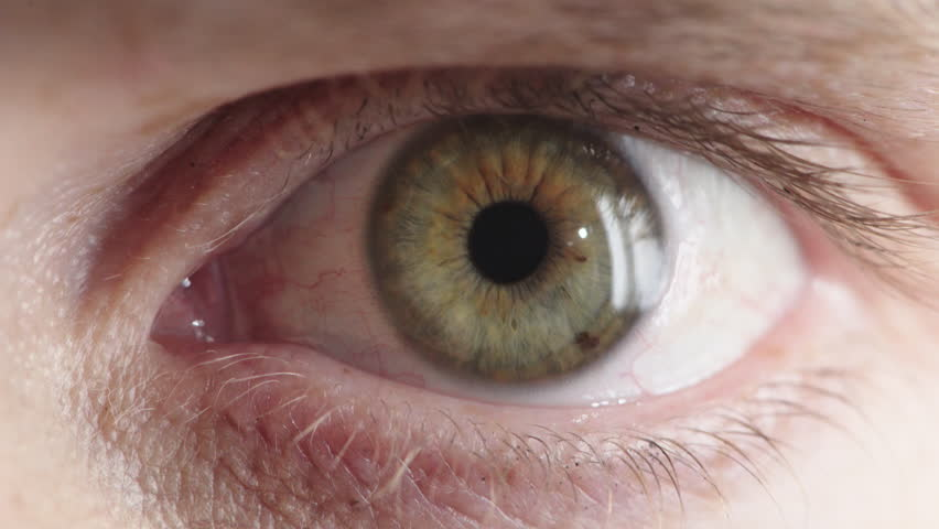 Close up human eye opening iris contracting looking surprised shocked pupil reflection | Shutterstock HD Video #1013095880