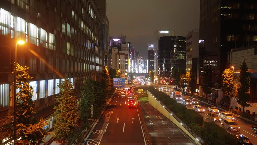 Tokyo street view by night | Shutterstock HD Video #1013148800