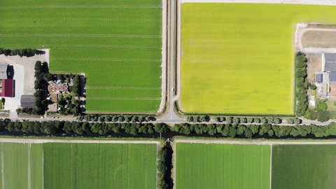 Aerial shoot of the Dutch polder landscape with Agricultural fields