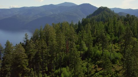 Sweeping aerial view skimming past trees to reveal Lake Pend Oreille, Idaho