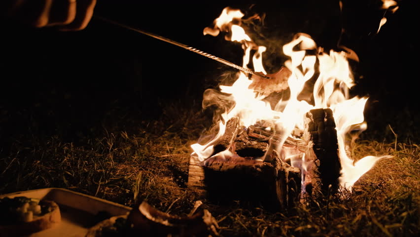 Camp fire during the night with some bacon roasting | Shutterstock HD Video #1013648930