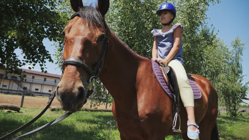 A young girl caresses a horse while riding. A little girl is sitting on a horse in a helmet | Shutterstock HD Video #1013677010