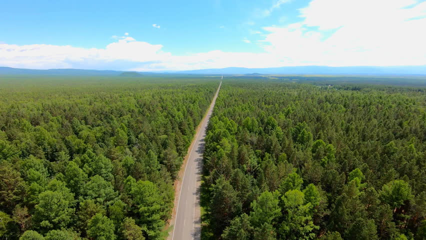 Aerial view of road through the forest. Bird's-eye view. Beautiful landscape   Shutterstock HD Video #1013759390