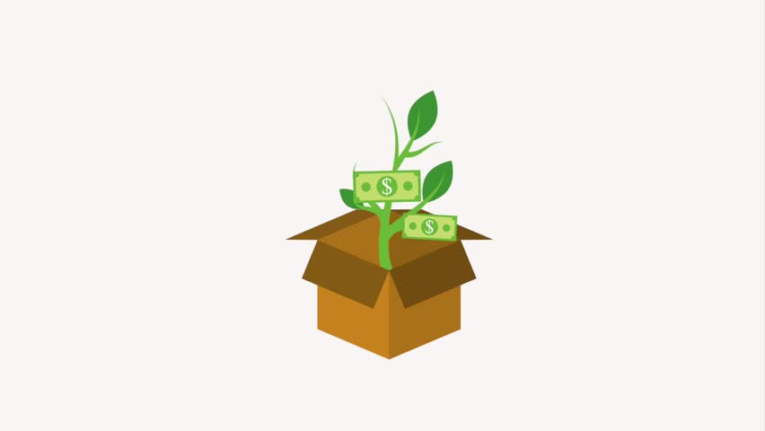 Cardboard box and potted plant dollar banknote growth   Shutterstock HD Video #1013792150