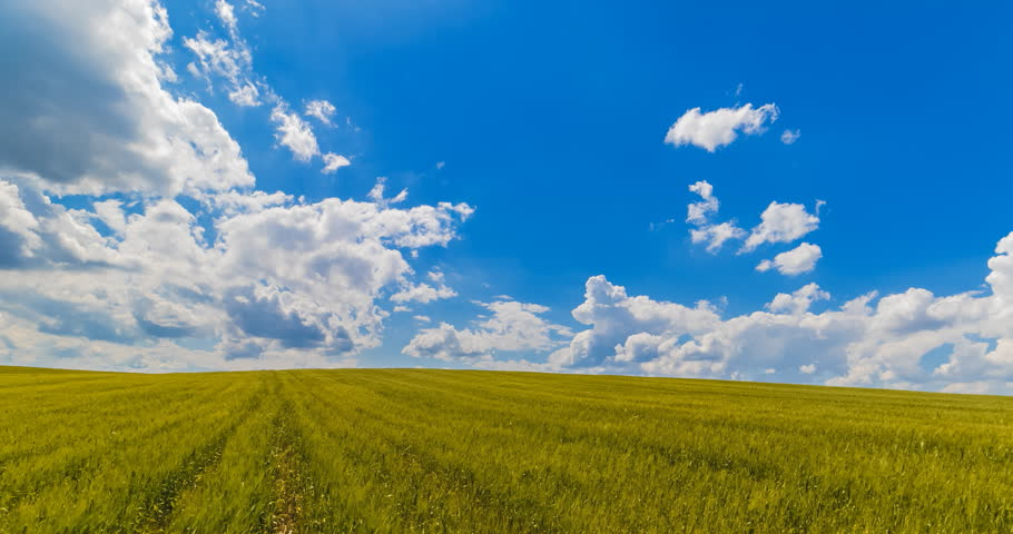 landscape of green grass fields under blue sky with white clouds, time-lapse movement, nature and relax, climate change concept
