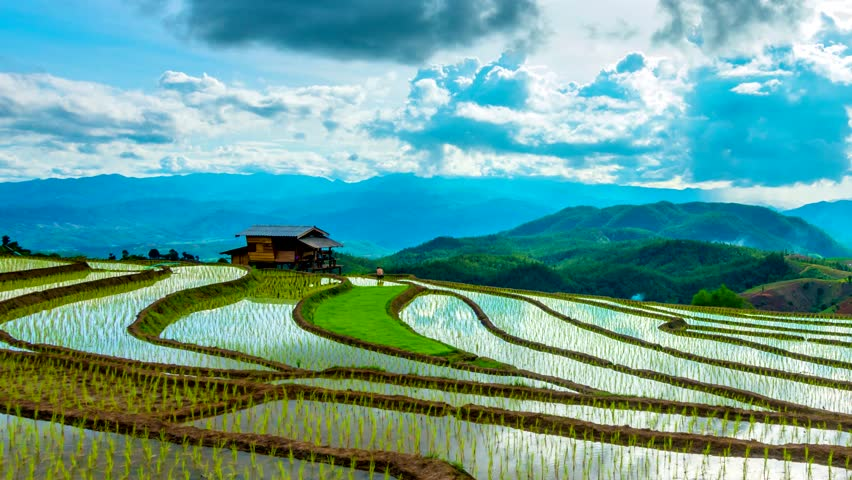 Time lapse, Clouds moving over the rice fields reflected in the water at Pa Bong Piang village Chiang mai, thailand. Camera zoom out, video 4k