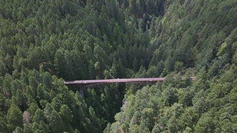 4k aerial drone of trestle abandoned train bridge in goldstream provincial  park without railing  hiking route on vancouver island  camera arcs  showcasing train track bridge revealing valley