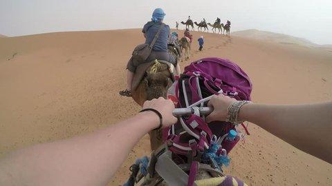 Riding camel through Sahara Desert