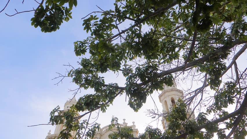 Catedral Church Hermosillo Sonora Mexico Ave Volando en Cámara Lenta #1014833410