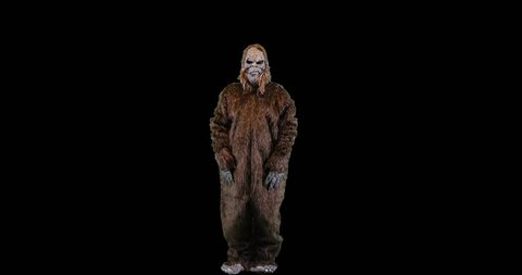 Bigfoot or Sasquatch creature looking and gesturing down.