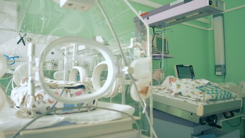 Little babies are in incubator in a hospital room, close up.