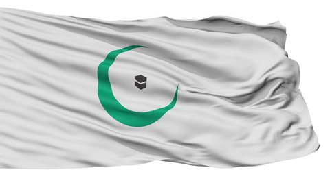 Organisation Of Islamic Cooperation Flag, Isolated View Realistic Animation Seamless Loop - 10 Seconds Long