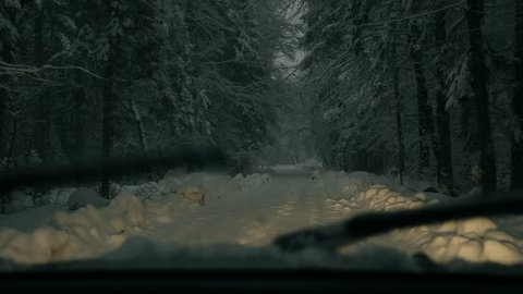 Breaking news about the severe weather - POV of the car driving through a snowy forest.