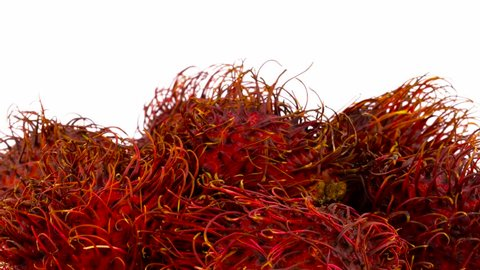 Macro shooting of upper part of heap of red color rambutan fruits. Slowly rotating on the turntable isolated on the white background. Close-up.