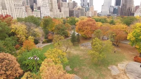 Aerial view of beautiful fall foliage in Central Park NYC