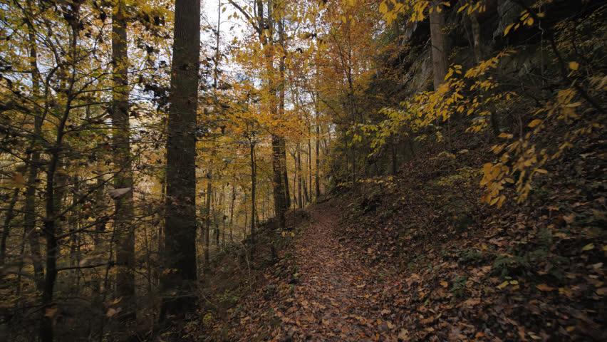 Beautiful cinematic of walking in woods at Yahoo Falls in Big South Fork National River & Recreation Area in McCreary County, Kentucky near Whitely City in Autumn awesome fall color & falling leaves.