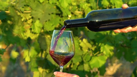 Tuscany, Italy. Girl pours red wine from a bottle in a glass on the vineyards in slow motion close-up