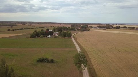 Countryside road among golden ripe wheat fields and farmhouses and barns on a cloudy summer day. Aerial footage.