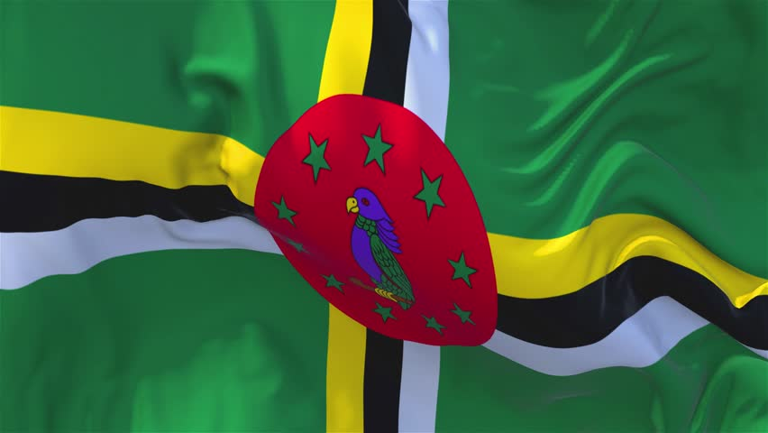 111. Dominica Flag Waving in Wind Slow Motion Animation . 4K Realistic Fabric Texture Flag Smooth Blowing on a windy day Continuous Seamless Loop Background.