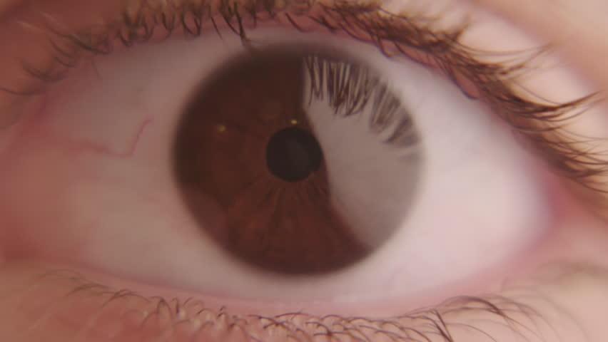 Human Eye / Super Macro Shot on Arri Alexa   Shutterstock HD Video #1016415310