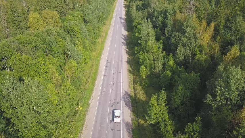 Aerial view of forest plain and car which are riding on highway. Clip. Top view of car riding on forest road