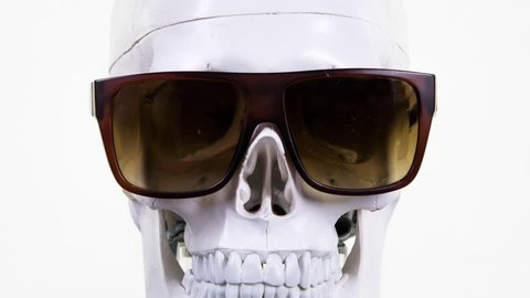 skull with changing cool sunglasses and glasses.