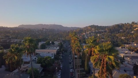 Beautiful aerial Los Angeles view with long Palms during sunset. California view near Hollywood sign district.