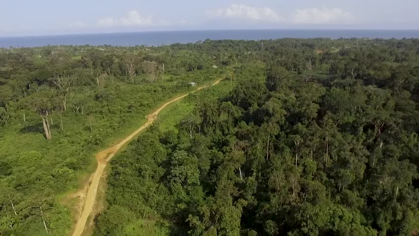 Aerial view of coastline, forest and sea in Kribi in Cameroon, west Africa. Dronees forward, along dirt road, toward the sea.   Shutterstock HD Video #1017415030