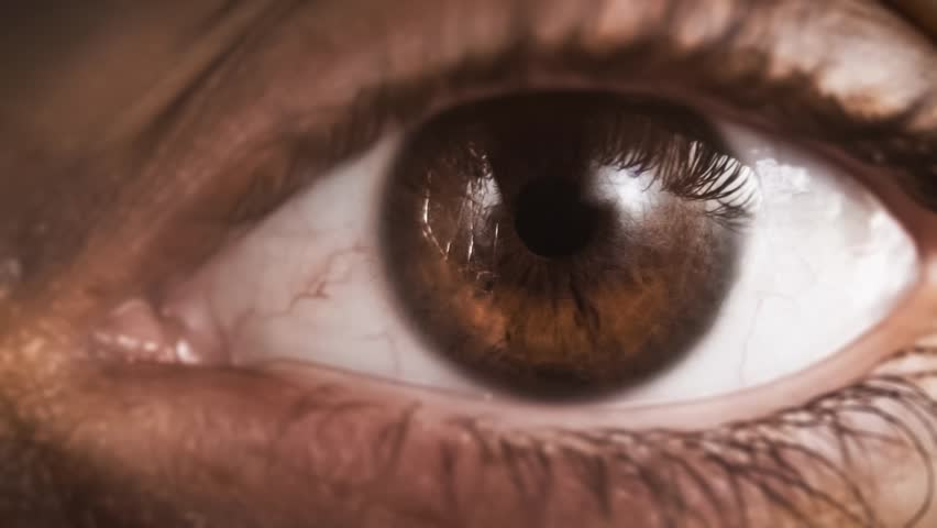 Closeup macro human eye woman blinking slow motion close up brown hazel