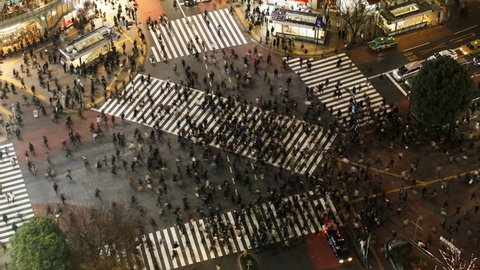 asia japan tokyo shibuya shibuya crossing crowds of people crossing the fam