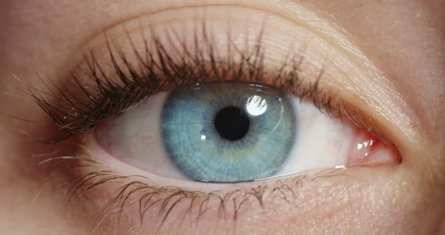 Close up macro blue eye opening natural human beauty healthy eyesight | Shutterstock HD Video #1018711450