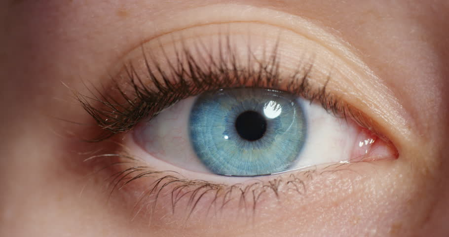 Close Up Beautiful Blue Eye Stock Footage Video 100 -4976