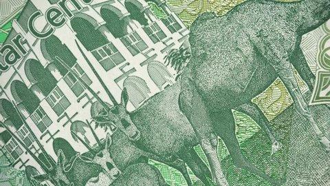 Qatar 5 riyal (2015) banknote rotating, National Museum in Doha, Qatari money closeup. 4K UHD video footage.