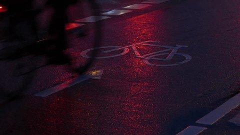 bike path, Rain wet road, lights, directional arrow in the rain at dusk, Bremen, Germany, Europe