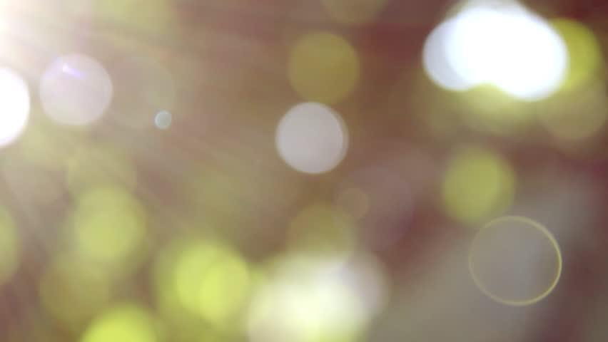 Defocus, nature background. | Shutterstock HD Video #1020894070