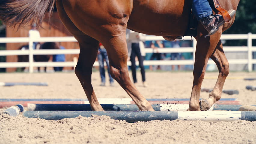 Horse spinning inside the ground poles square HD. Long shot close up slow motion on horse hooves turn inside the square in riding arena. Cowboy turning the horse. | Shutterstock HD Video #1021379530