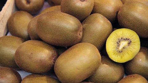 Harvest of fresh kiwi close up