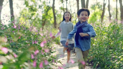 Beautiful little asian girl and boy sister and brother running on flagstone  path through flower blossom in park
