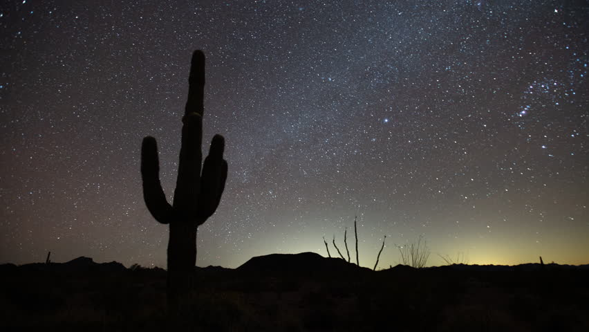 Time lapse of a Saguaro cactus silhouetted by the glow of distant lights and Milky Way Galaxy stars on a calm clear moonless night in the Sonoran desert in Arizona as car lights streak in the distance | Shutterstock HD Video #1022326870