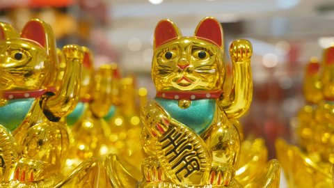 Japanese Lucky Cat sitting on the store shelf.